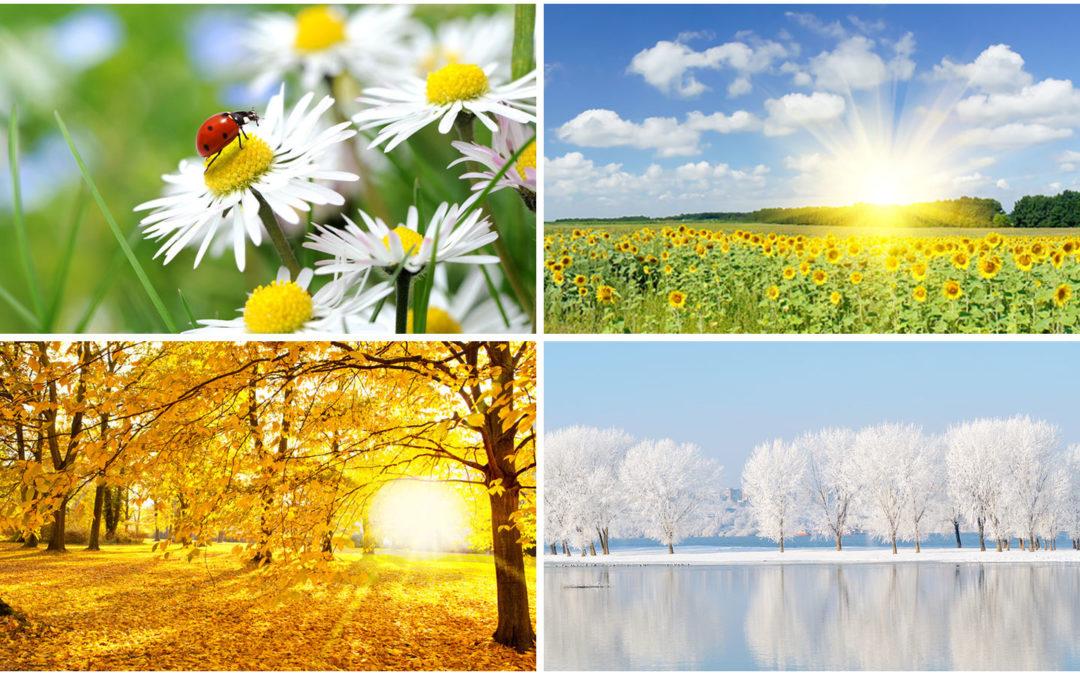 Wohlbefinden und Gesundheit in allen 4 Jahreszeiten